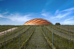 Bevagna - Lunelli's Winery: Carapace